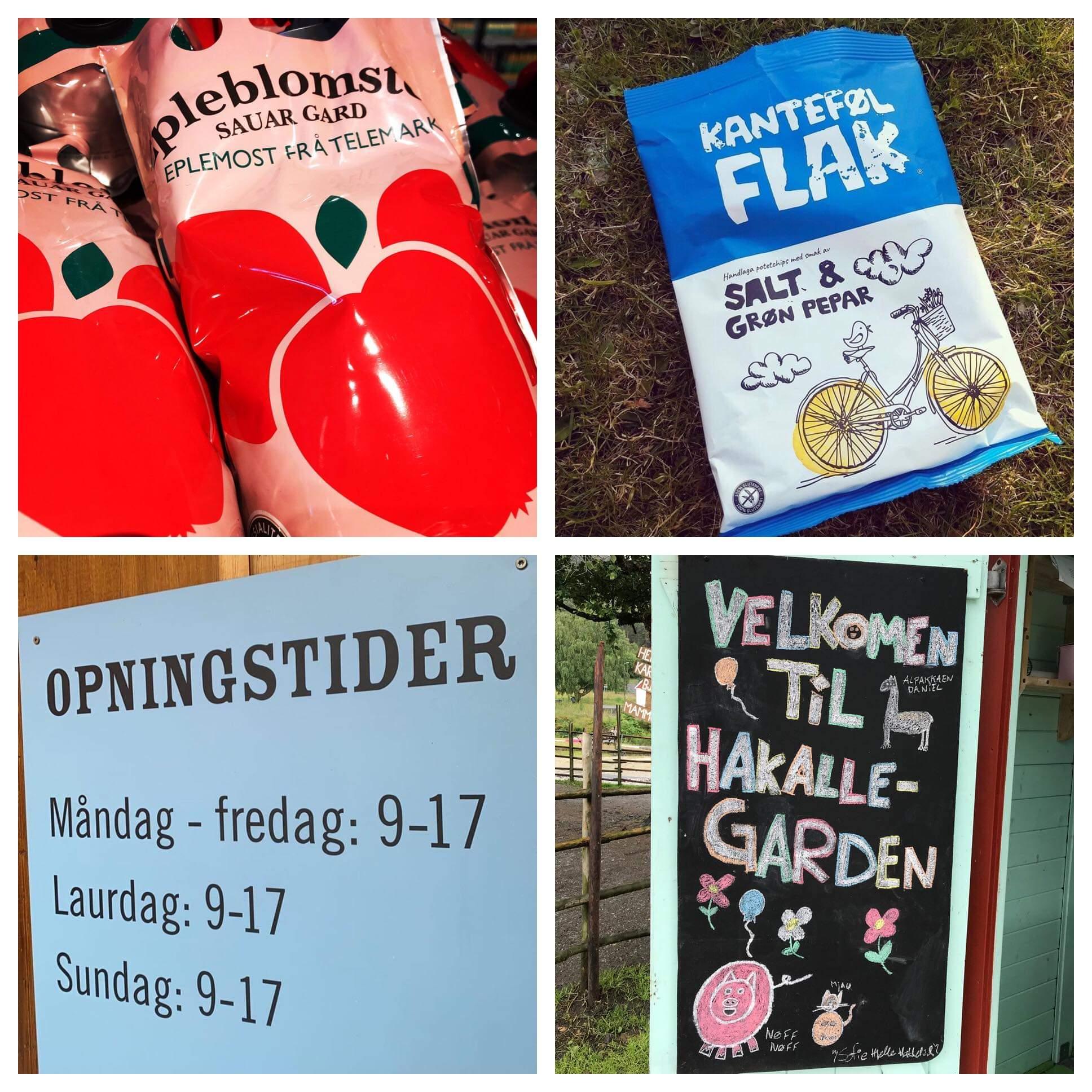 Kandidatar  til  Nynorsk  næringslivspris